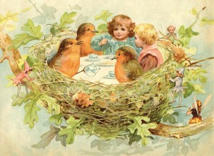 Bird's Nest Tea Party
